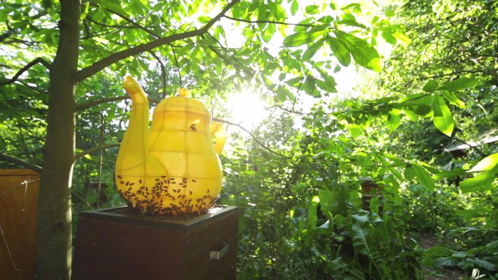 Honeybee Created Teapot