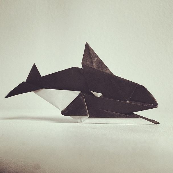 Killer Whale Origami