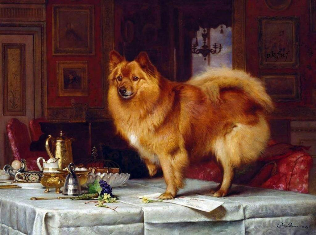Marco on the Queen's Breakfast Table by Charles Burton Barber - 1893.jpg