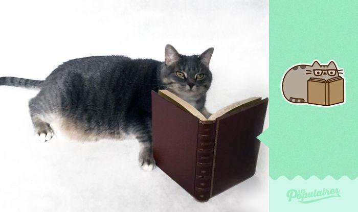 Pusheen Cat - The Book