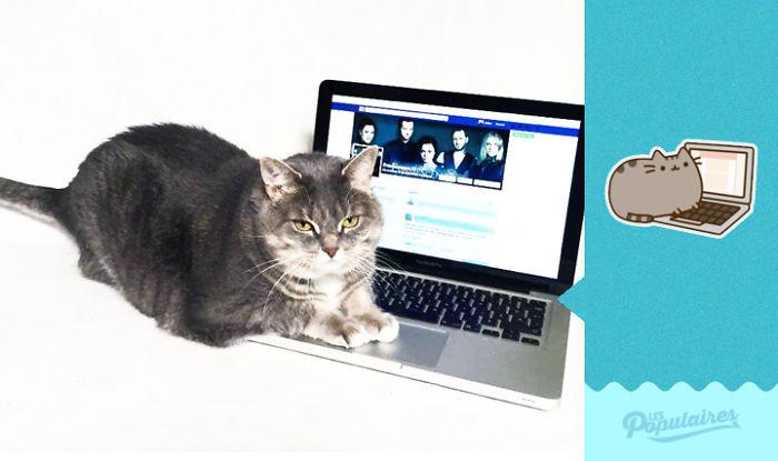 Pusheen Cat - The Laptop