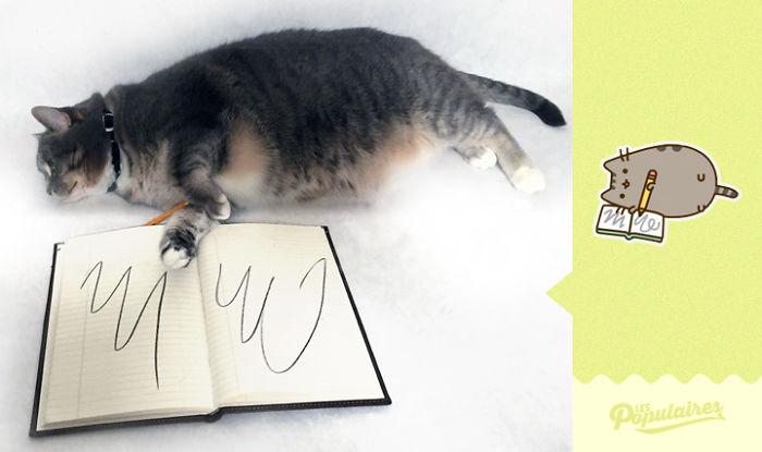 Pusheen Cat - The Notebook