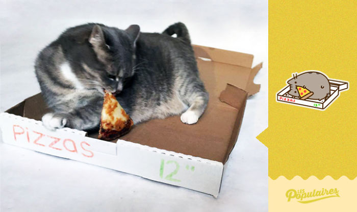 Pusheen Cat - The Pizza