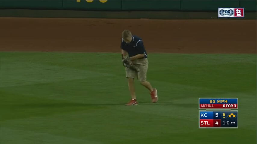 Rally Cat invades the field during Royals-Cardinals screenshot (1).jpg