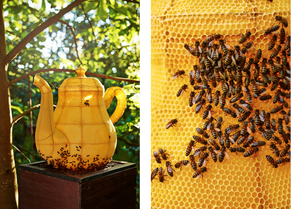 60000 Very Talented Bees Created This Teapot