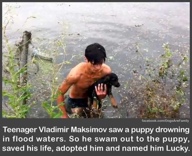 Teenager Saved Dog And Adopted Them