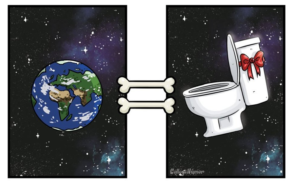 The World Is A Dogs Toilet