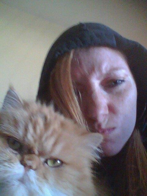 These Animal Photobombs Are Perfect In Every Way - 20 hilarious cat photobombs