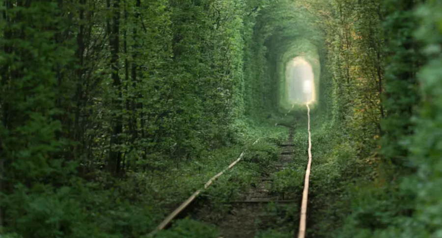 Tunnel Of Love In Klevan In Ukraine
