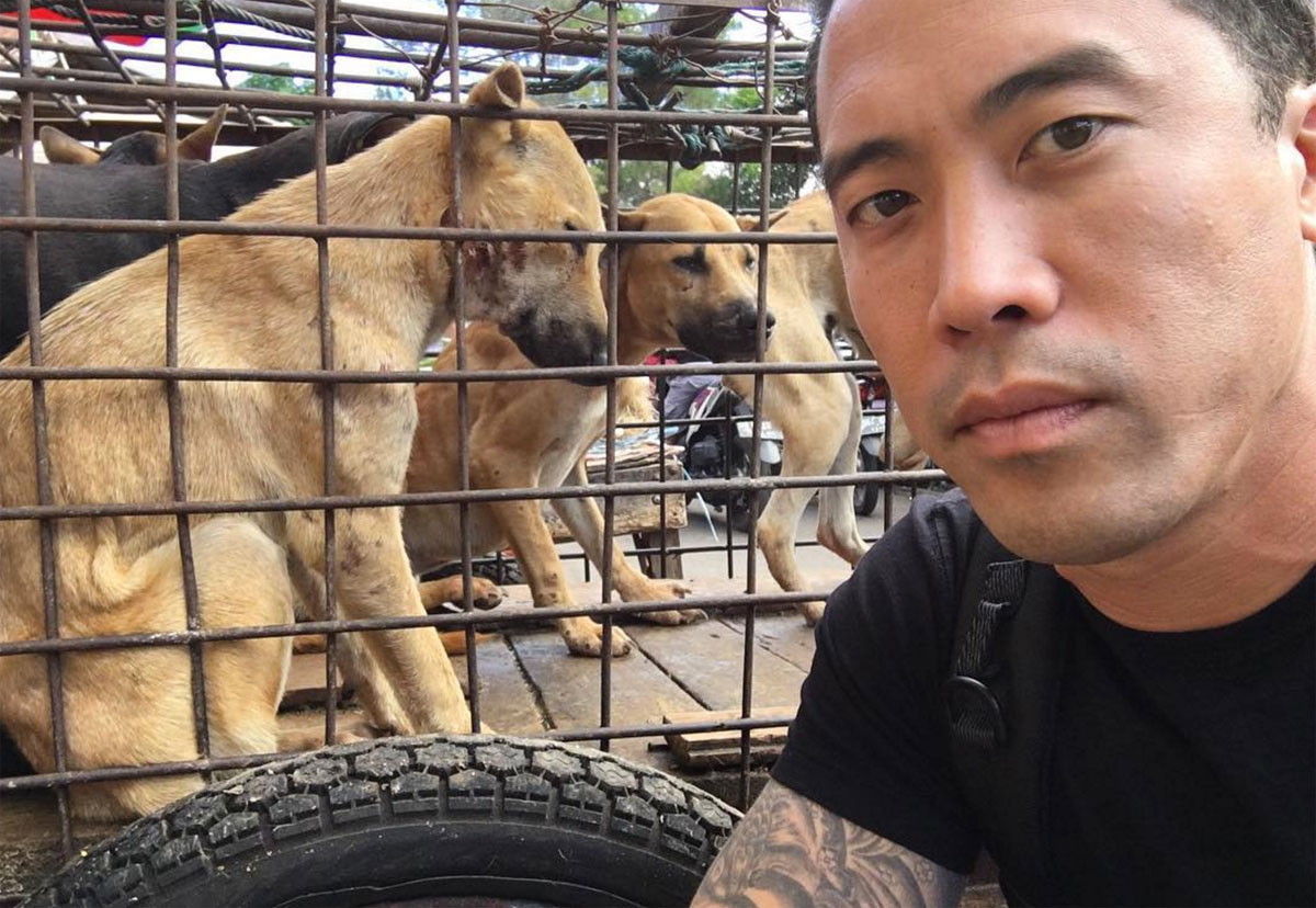 This Man Goes Undercover To Save Dogs