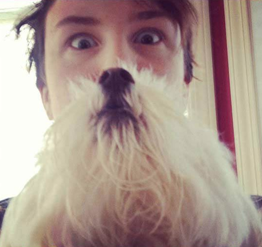 Wear Your Dog Like A Beard