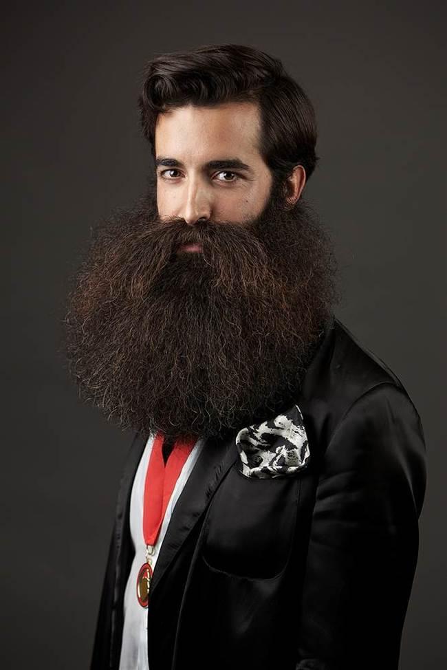 Beards Carefully Curated Crazy Beardlong