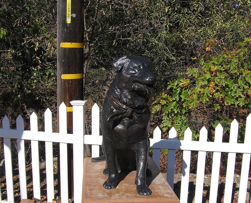 Bosco The Dog was mayor of Sunol, CA from 1981 until 1984