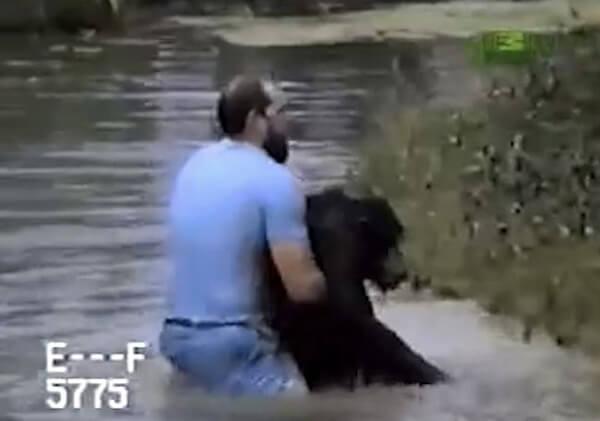 chimp-rescue-5.jpg