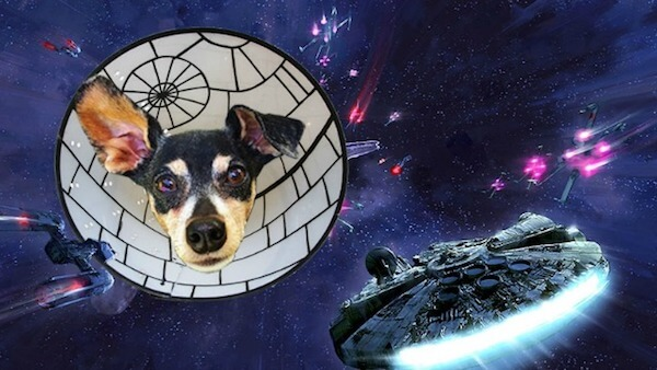 death star of cuteness.jpg