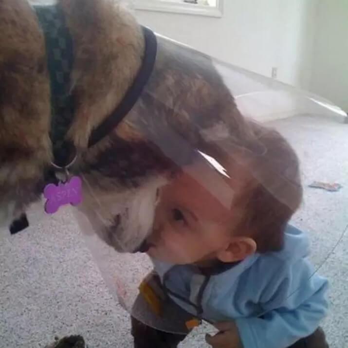 doggie baby duo.jpg