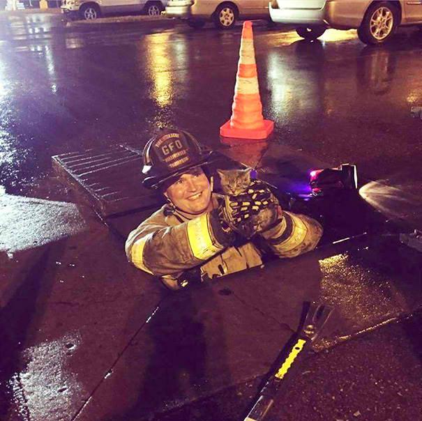Manhole, No Problem