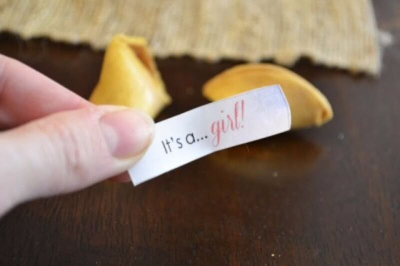 What's Your Fortune?