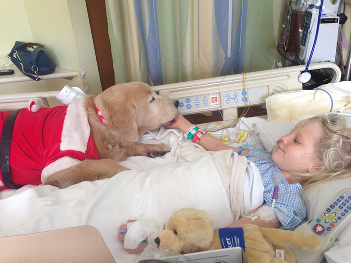 rmb2n-therapy-dog-kids-1