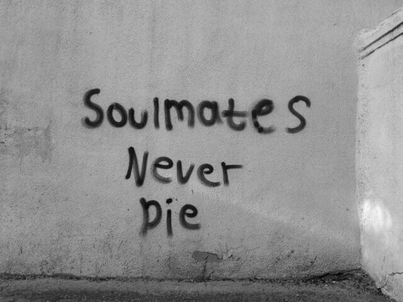 soulmated don't die.jpg
