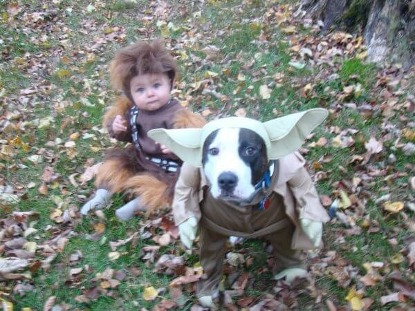 starwarsdogs10.jpg
