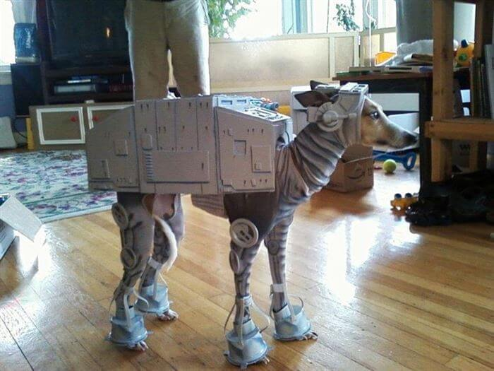 starwarsdogs8.jpg