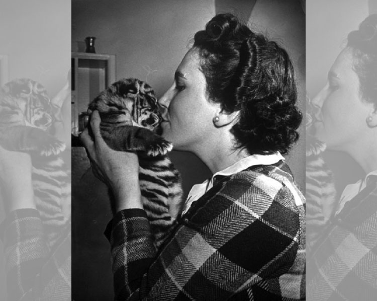 Mrs. Martini And The Tiger Cub