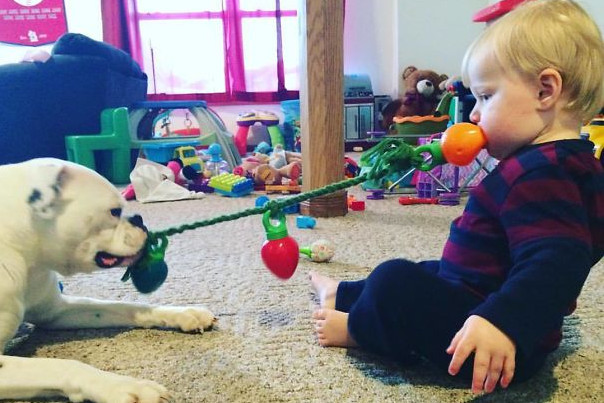 Puppy & Toddler Playtime