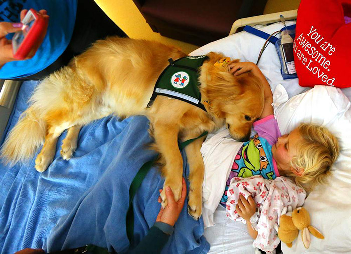 ywtdp-therapy-dog-kids-3
