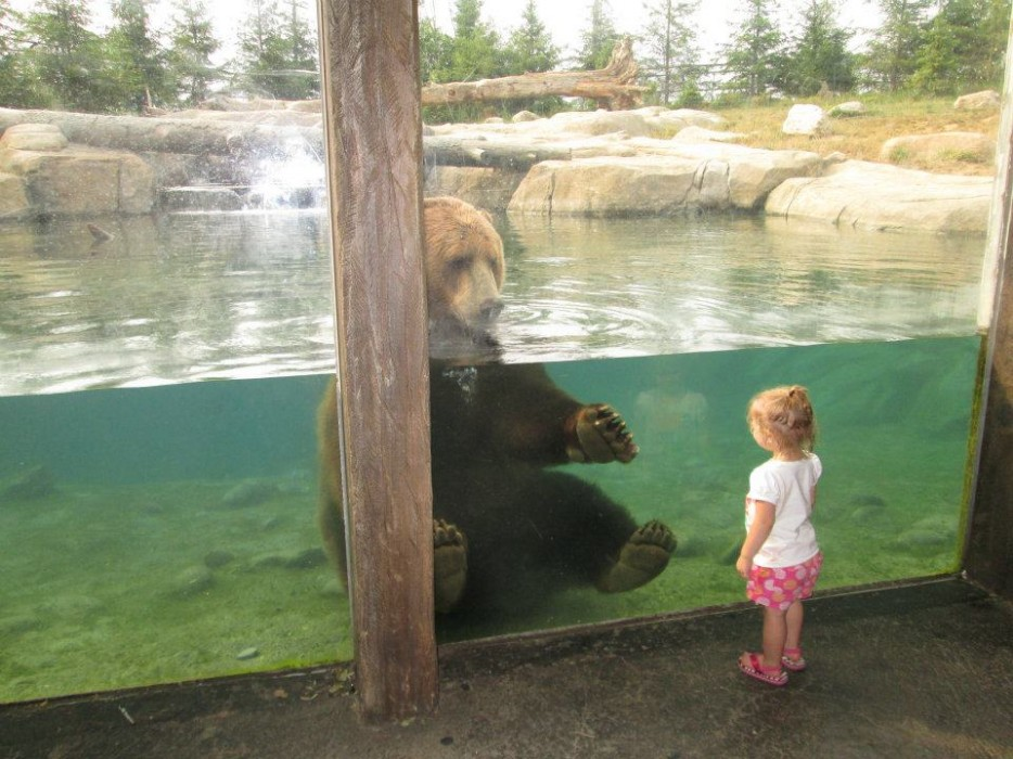 Baby Makes Friends With Zoo Animal