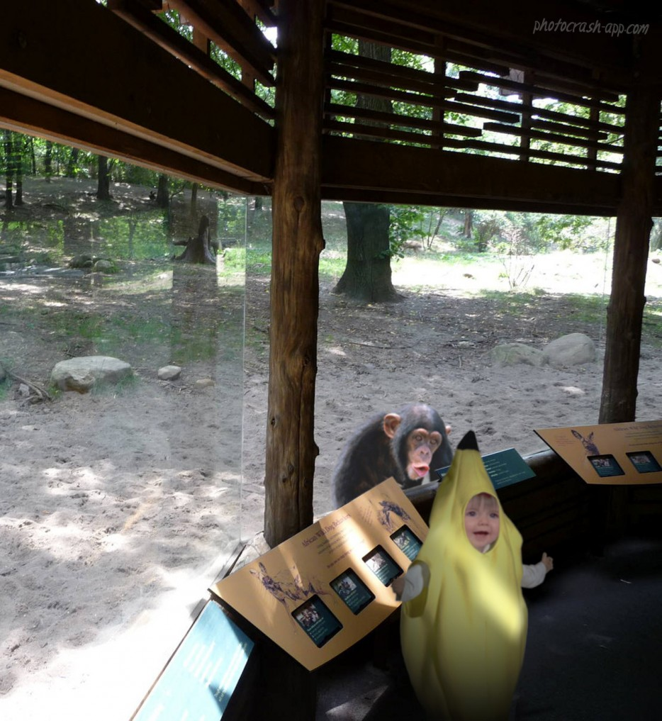 Adorable Banana Suit at Zoo